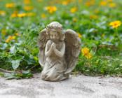 Praying Angel in Gray Tone