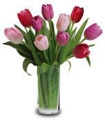 as Shown 10 Tulips