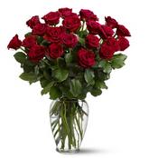 Dos docenas de Rosas Rojas
