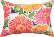 Gerbera Daisy Striped Pillow
