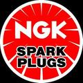 Detroit Tuned offers NGK