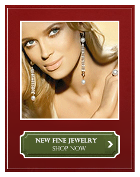 model-shop-now-new-fine-jewelry-red-bella-couture-green-logo-red-holiday-banner-ii-small.png
