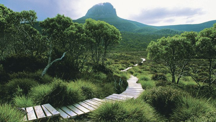 tasmanian-wilderness.png