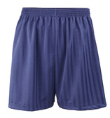 Shadow Stripe PE Shorts - Navy 18-28""