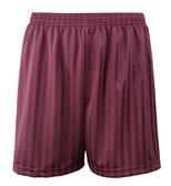 "Shadow Stripe PE Shorts - Maroon 18-28"""