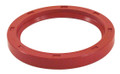 113-105-245FBR  rear main seal,