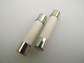 T10A 32mm Ceramic Microwave Fuse x 2