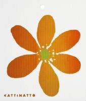 Orange Anemone