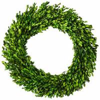 Preserved Boxwood Garden Wreath