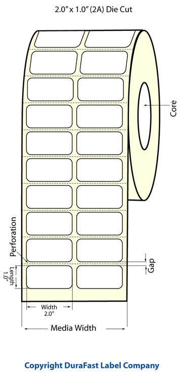 """Epson TM-C3500 2"""" x 1"""" Matte Labels"""