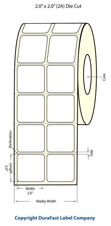 """Epson TM-C3500 2"""" x 2"""" Matte Labels"""