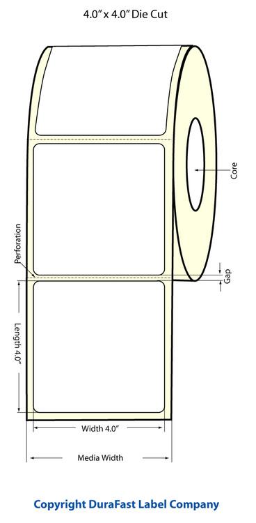 """Epson TM-C3500 4"""" x 4"""" Matte Labels"""