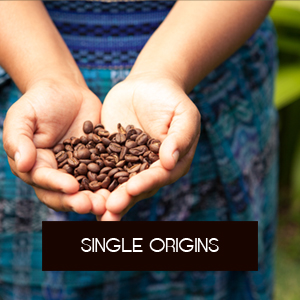 Shop Single Origins