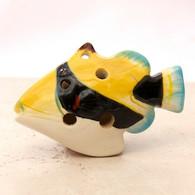 Humuhumunukunukuāpuaʻa ~ Trigger Fish (flute)