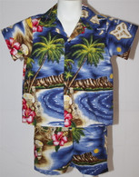 Boys Aloha Shirt & Short Set in Hawaiian Paradise