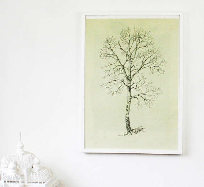 Vintage Double Sided Tree Print, Aspen