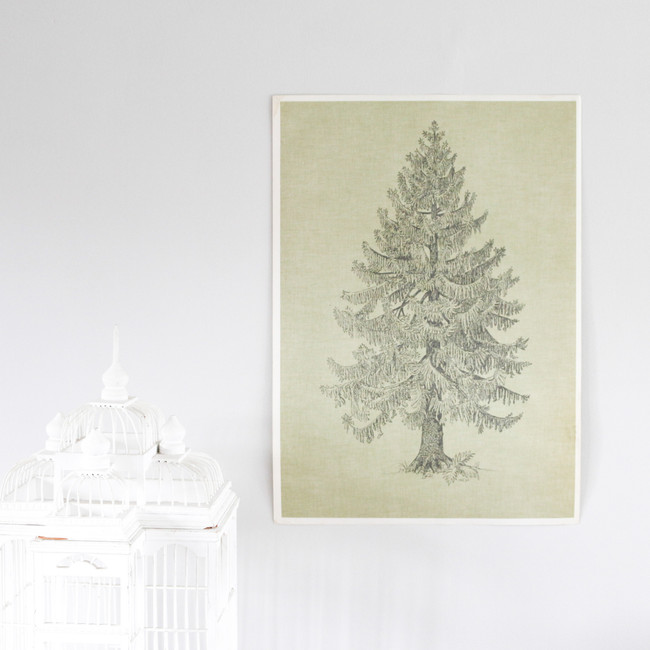 Vintage Double Sided Tree Print, Fir Tree