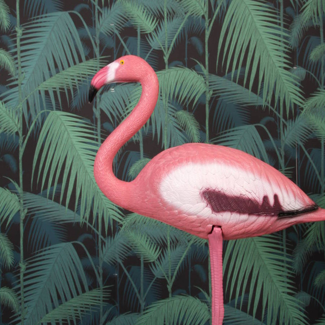 Pink Flamingo, express delivery