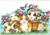 guinea pigs and flowers