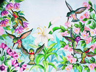 bright hummingbirds