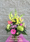 They will love this beautiful arrangement. A selection of the freshest flowers Spring, Summer, Fall and Winter blooms. We will design a beautiful arrangement for your mother, wife, sister and or son and daughter, Mother's Day,  Easter, Passover, Spring, Now Ruz , or any occasion.