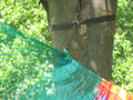 Tropical Siesta™ Hammock Tree Safe Hanging Straps