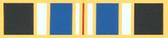 Humane Action Medal Ribbon Lapel Pin