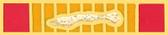Republic of Vietnam (RVN) Gallantry Ribbon Lapel Pin