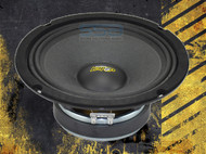 "Audio Legion ME8 8"" 8 Ohm Pro Audio Speakers (Pair)"