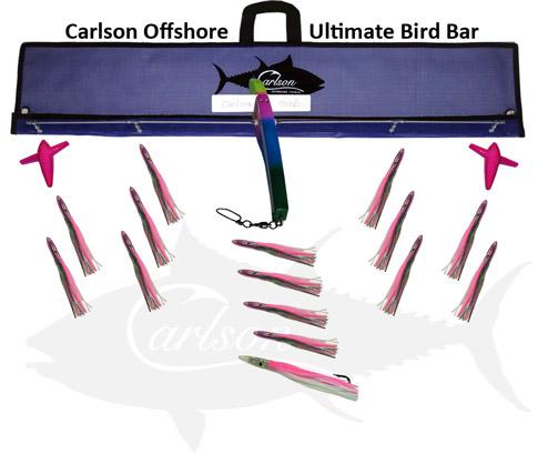 head-head-birdbar-485.jpg