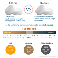 Bromine and Chlorine: Which to Choose?