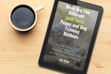 What Are The Different (and best) Puppy and Dog Training Methods