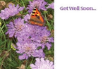 Gell Well Soon - Scabious/Butterfly