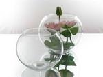 Bubble Ball (25 x 19.5cm)
