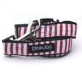 """Captain Pooch"" Nautical Stripe Dog Collar + Leash Set (Red)"