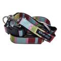 """Captain Pooch"" Fantasy Dog Collar + Leash Set (Rainbow)"