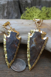 Gorgeous Pair of Electroformed Petrified Wood Gauged Earrings
