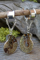 Ammonite Fossil Magnetic Clasp Gauged Earrings