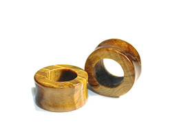 Tigers Eye Tunnels