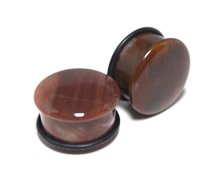 Beautiful Petrified Wood Plugs, One of a Kind 7/8""