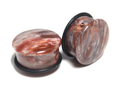 "One of a Kind Petrified Wood Plugs 7/8"" (22mm)"