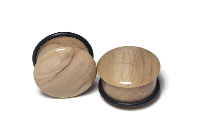 Gorgeous One of a Kind Petrified Wood Plugs 7/8""