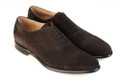 CAINE - Dark Brown Suede - F