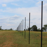 10' H Deer Fence Heavy Line Posts-1 Pack