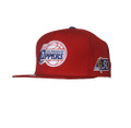 Los Angeles Clippers Mitchell and Ness NBA 50th Anniversary Pro-Fit Hat
