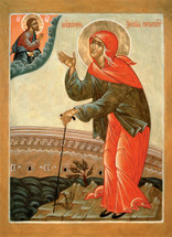 Icon of St. Xenia the Fool-for-Christ - 21st c. - Slavonic - (1XE11)