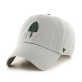 Grey Lone Pine Clean Up Hat