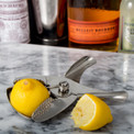 When life gives you lemons, make a sidecar.