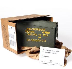 jerky-ammo-case.jpg