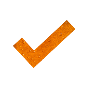 Beery Checkmark